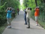monthly-bird-walks